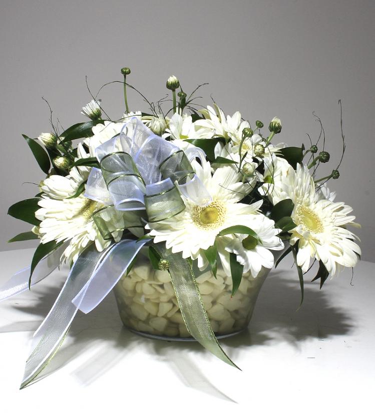 Cam Tabakta Beyaz Bahar Çiçekleri