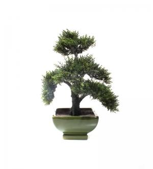 Mini Yapay Cedar Bonsai Ağacı