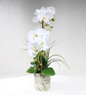 Yeşil Desenli Seramikte Yapay Beyaz Orkide