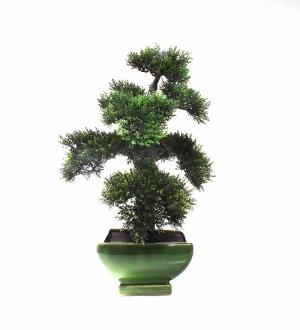 Yapay Cedar Bonzai Ağacı